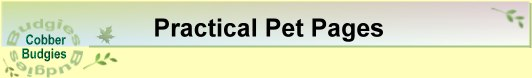 Title - Practical Pet Pages